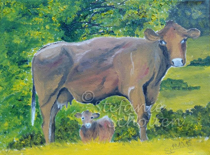Kühe in Simonskall