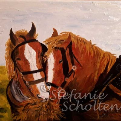 Zwei Pferde am Futterplatz